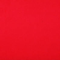 Genuine Roto Blackout Blind (ZRV-M) | 2-V21-Red