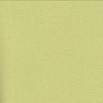 VALE R20 Large Translucent Roller Blind   Eden - Apple