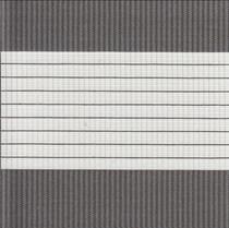 VALE Spring Multishade/Duorol Blind   Spring-Dark Grey-041